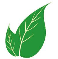 crpye-karşı-faydalı-bitkiler
